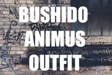 Bushido und Animus Outfit